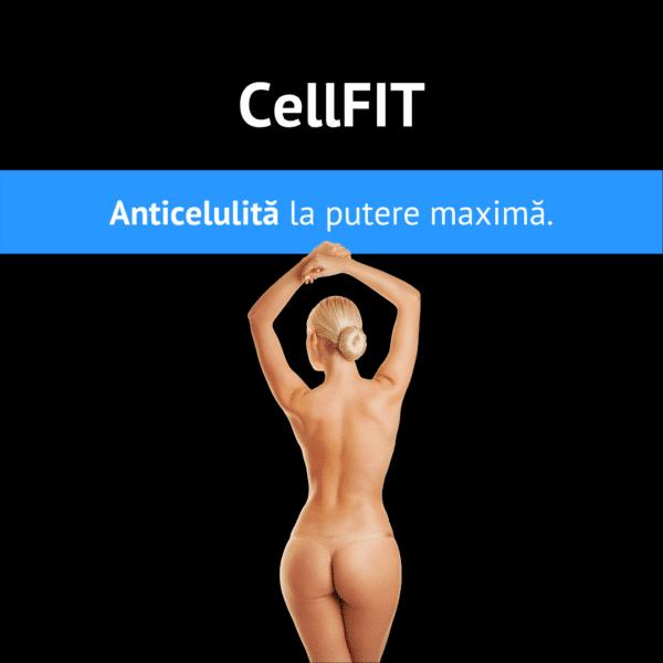 CellFIT 2