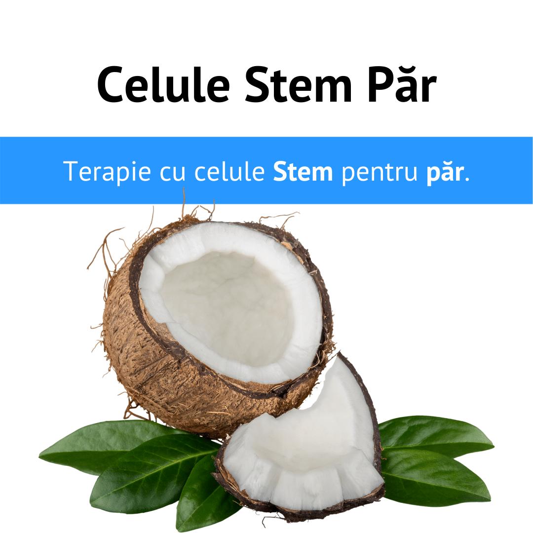 Tratament Celule Stem Par 1